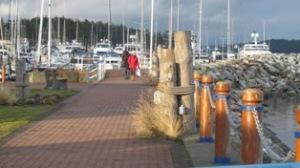 walking on Sidney's waterfront in January 2013